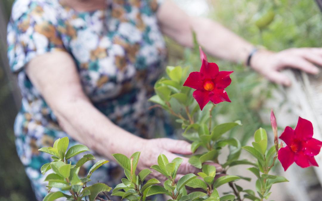 El Centro de Día Güelinos, el aliado perfecto para luchar contra la soledad y el aislamiento en nuestros mayores.